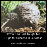 5 Success Tips for Business I Learned From Stalking a Kiwi Bird