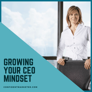 growing your CEO mindset
